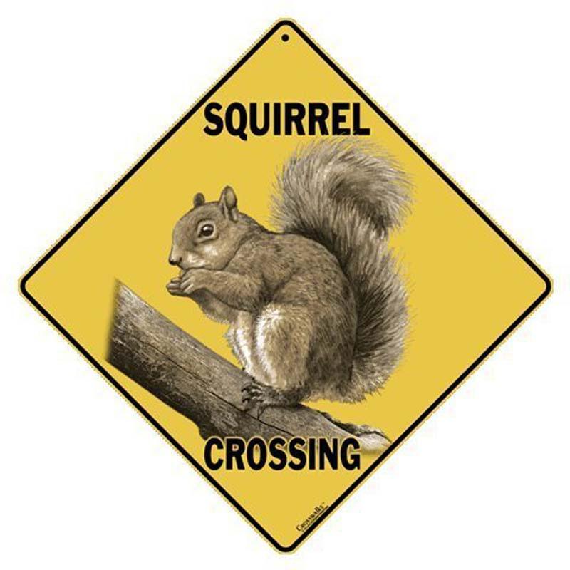 Squirrel Crossing - Sign