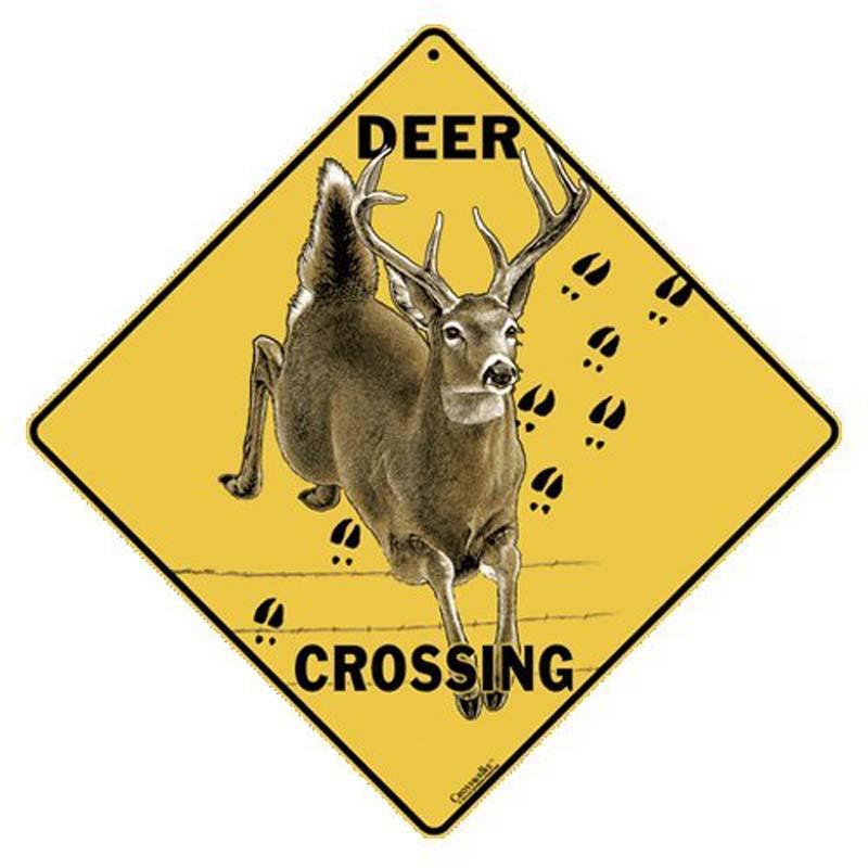 Deer Crossing - Sign