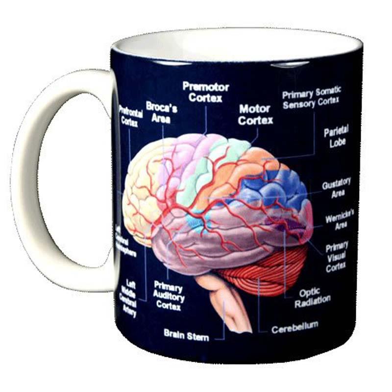 Brain - Mug
