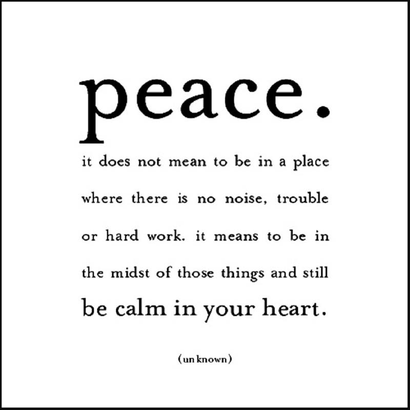 "Quotable Magnet - ""Peace. It Does Not Mean"