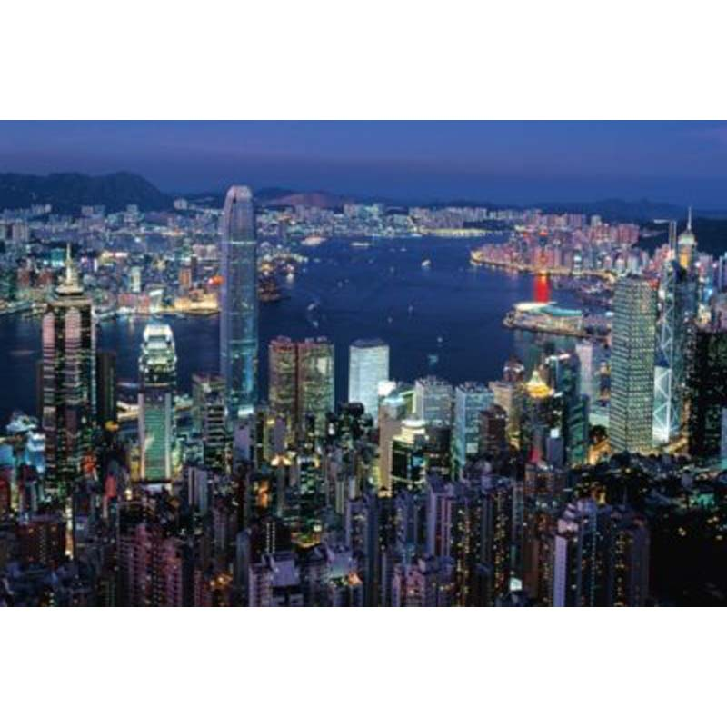 1000 Piece Glow-In-The-Dark Puzzle: Hong Kong By Night