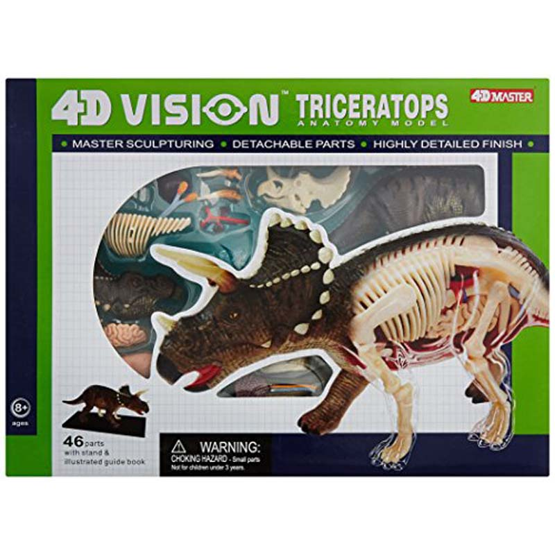 4D Triceratops Vision Model