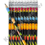 (Dozen) Space Pencils