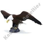 Mojo: American Bald Eagle